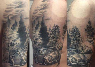 coche-escarabajo-y-paisaje-realismo