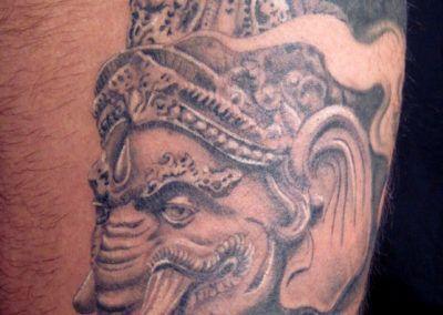 elefante-indio1
